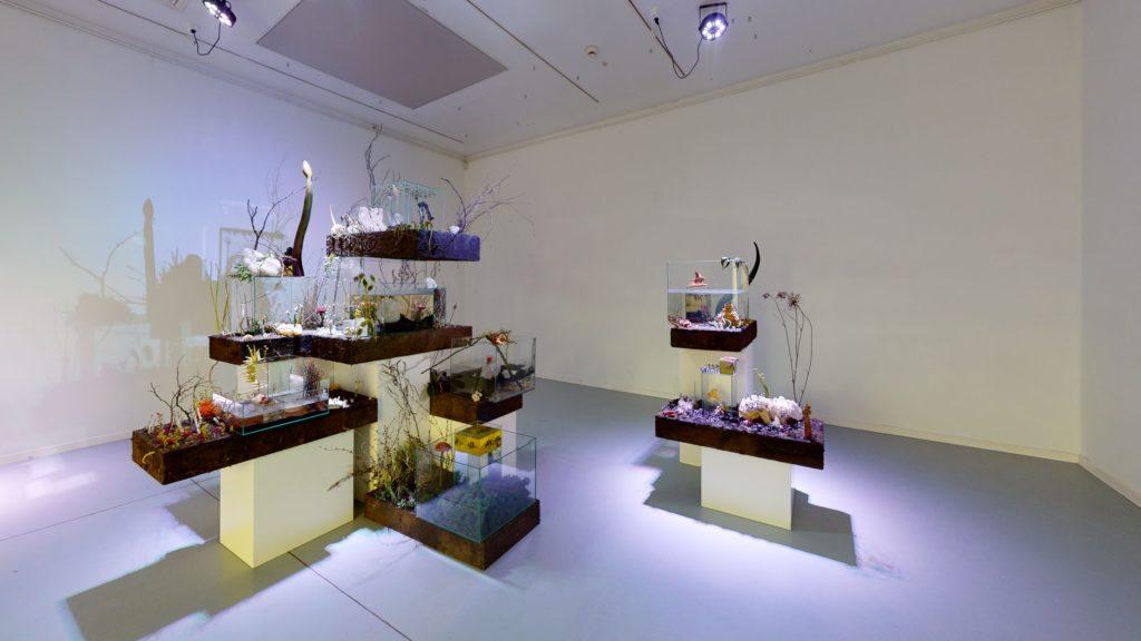 Galeria-Miejska-bwa-w-Bydgoszczy-Herbarium-novum-Efflorescentiae-Bedroom